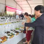 Embaixador visita Exposição Agrícola (Aldo Shiguti)